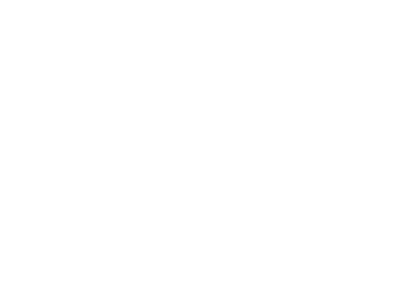 Fastefully logo